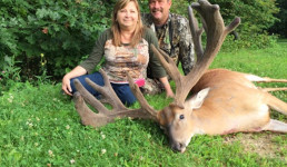 tommys buck